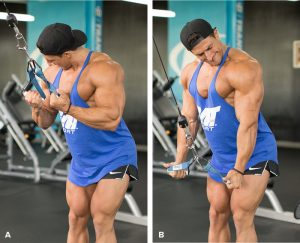 sadik-hadzovics-strong-arm-tactics-header